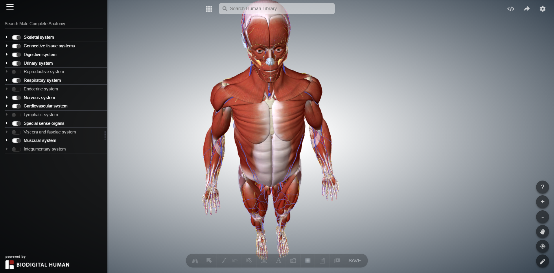 Anatomy & Physiology I Resources – Alan M. Batt